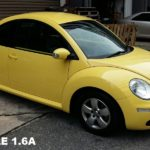 beetle1137